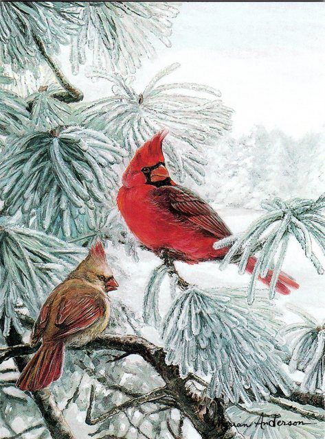 A pair of cardinals featured in Marian Anderson note cards, Welcome Pair