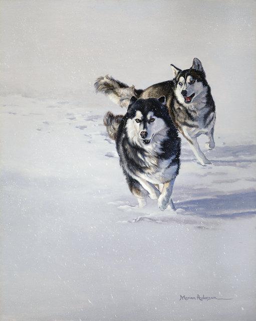 Snow Frolic - Will Steger Image
