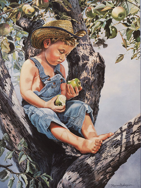 The Old Apple Tree Image