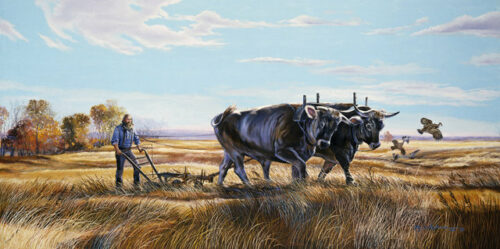 The Homesteader, a print by Marian Anderson, shows a man and his team of oxen, using a plow to plow his prairie field.