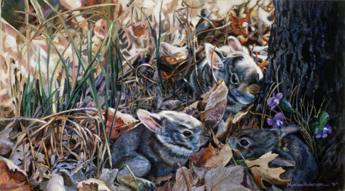 New Life, a print by Marian Anderson, shows a family of baby rabbits hiding among the grass and violets.