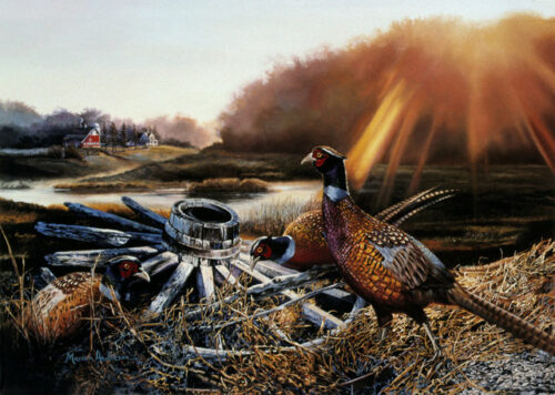 September Sunrise, a print by Marian Anderson, shows a trio of ring-necked pheasants on an autumn morning