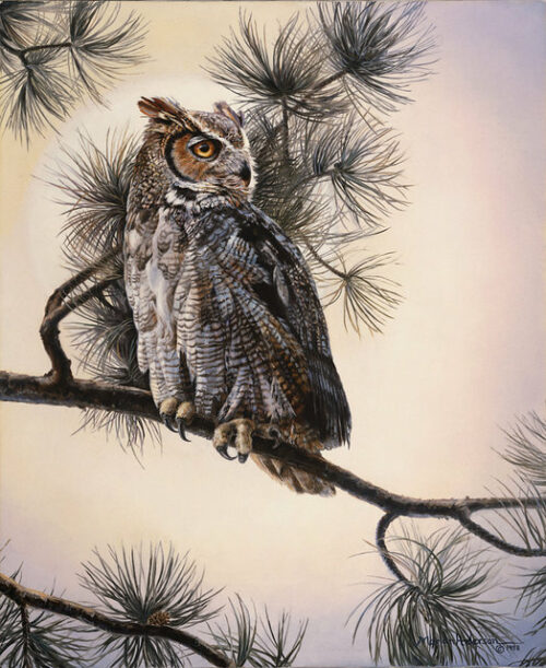 Soft Caller, a print by Marian Anderson, shows a lone Great Horned Owl on a tree branch.