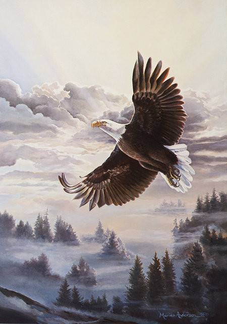 Sovereign of the Sky, a print by Marian Anderson, shows a bald eagle soaring high above